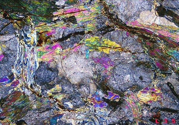 Amphibolite Thin Section